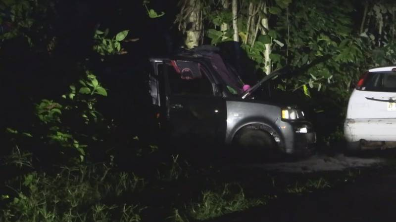 A woman is dead after a live power line fell onto her car.