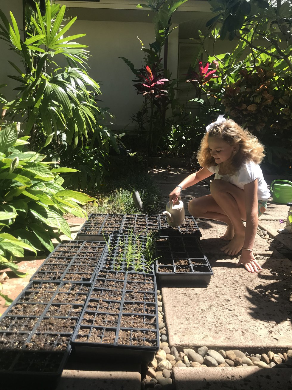 Abby Rogers is a volunteer with the Coral Reef Alliance (CORAL).