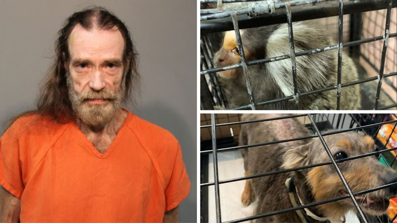 David Andrew Barber is charged with several counts of ill treatment of and hoarding of animals.