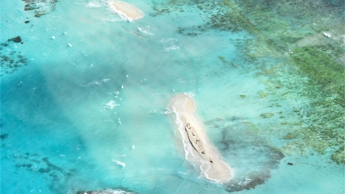 Slices of sand are beginning to reappear at East Island. Hurricane Walaka swamped the tiny...