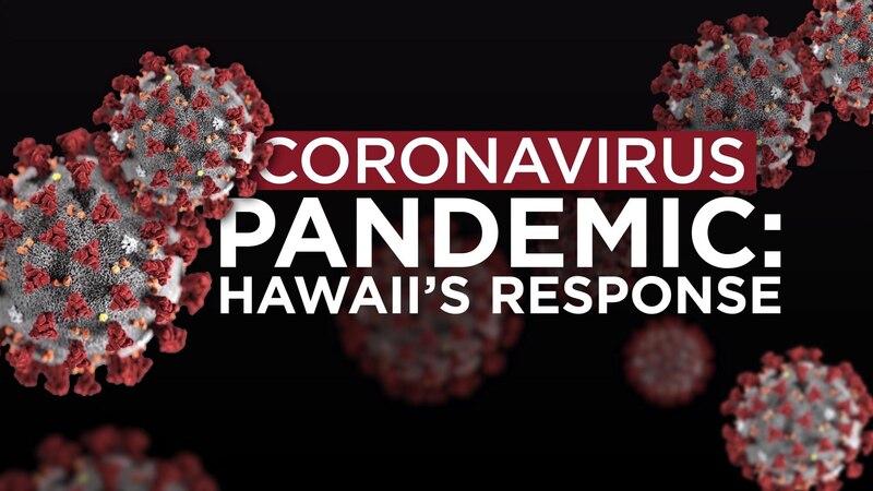 Coronavirus Pandemic: Hawaii's Response (4/14/2020)