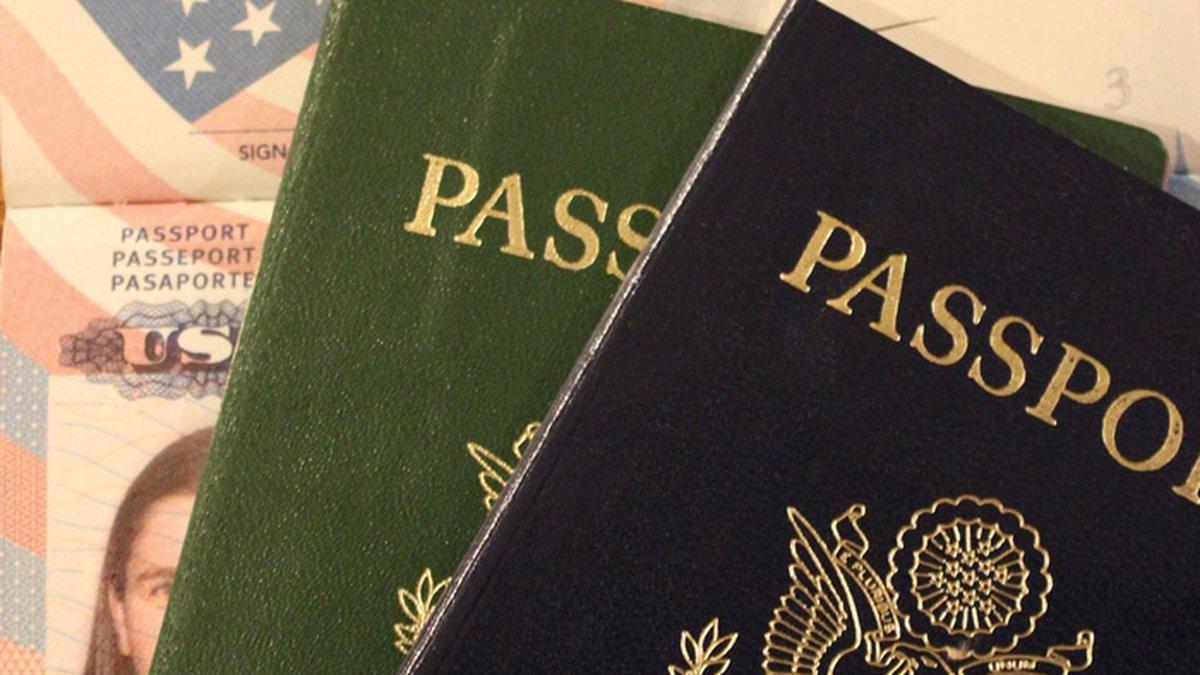 U.S. passport / Gray File Image