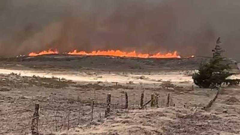 Big Island brush fire