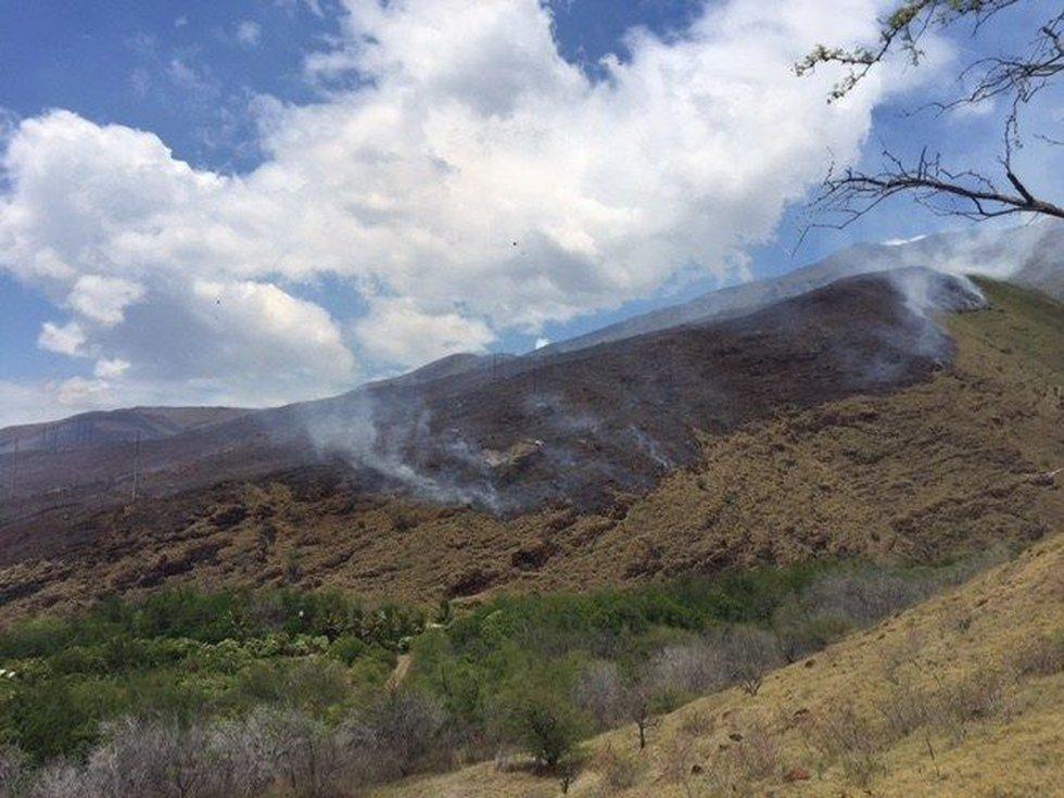 (Image: Maui Fire Department)