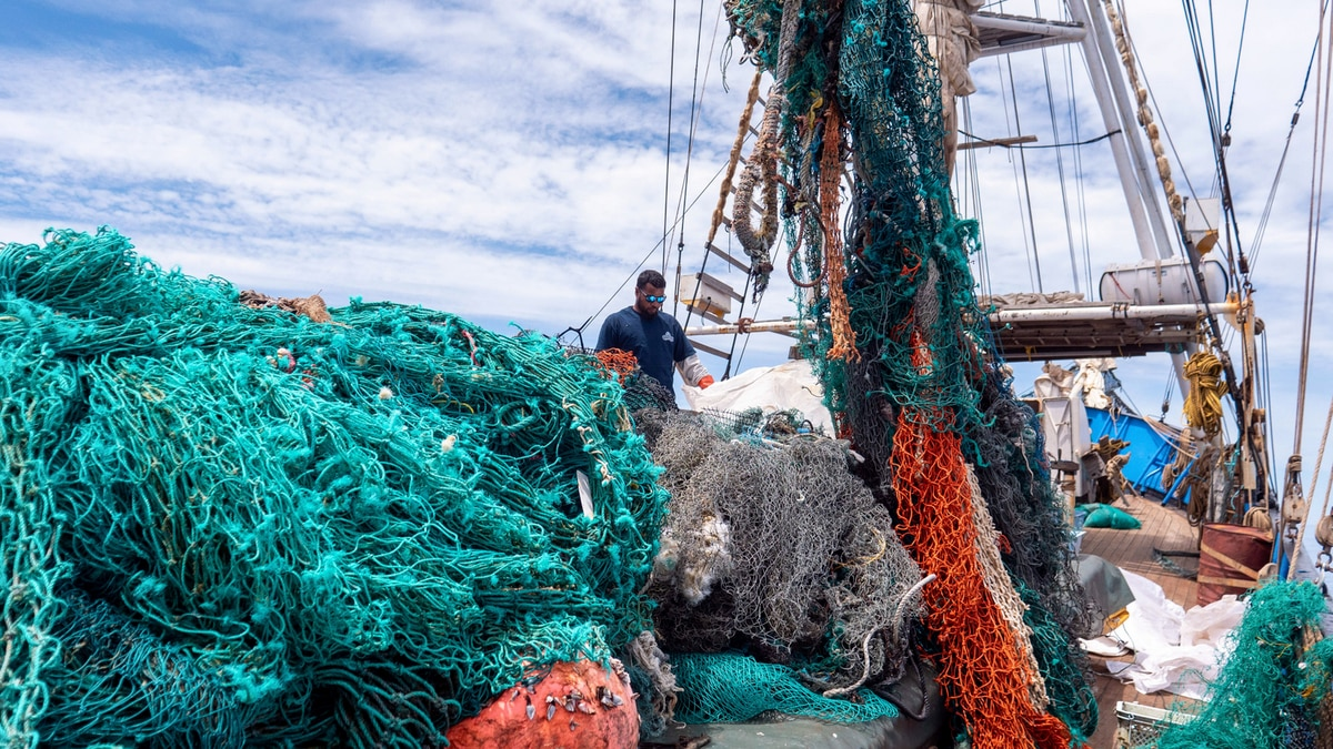 Marine debris removed from the Pacific garbage patch.