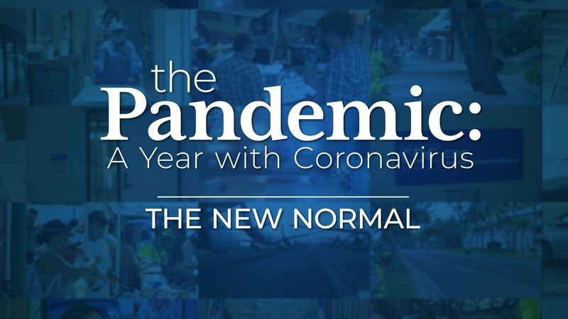 The New Normal - The Pandemic: A Year With Coronavirus