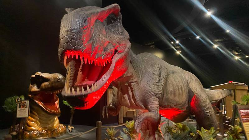 Dinosaurs are returning to the Bishop Museum in a new exhibit.