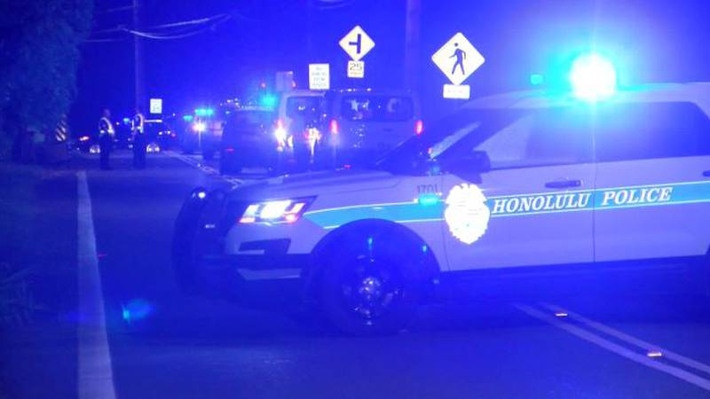 The driver in the pedestrian crash was arrested for failing to render aid after returning to...