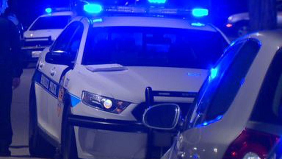 Honolulu police / file image