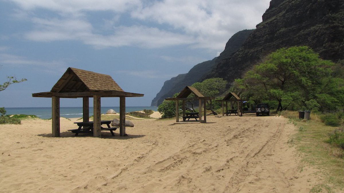 Polihale State Park (Image: Department of Land and Natural Resources)