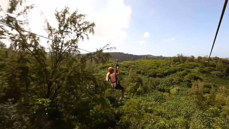 The city approved CLIMB Works Laie's permit for agribusiness activities that include a zipline...