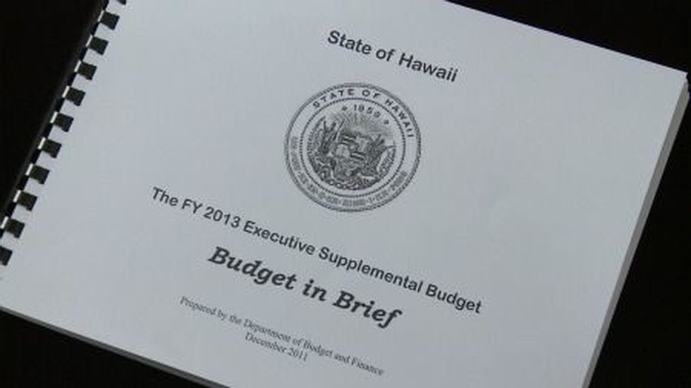 The FY 2013 Executive Supplemental Budget