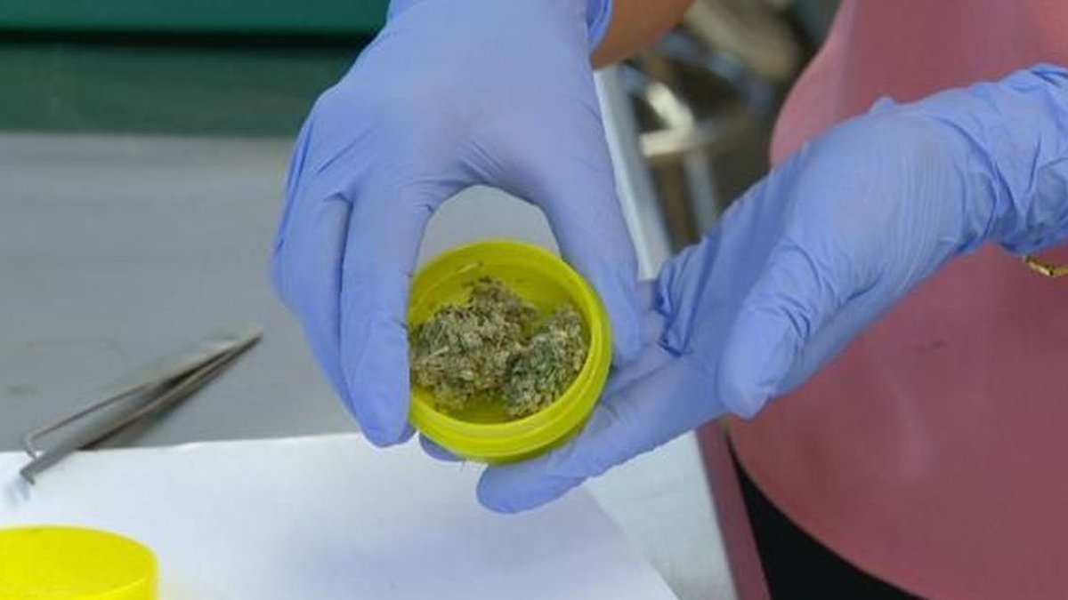 There are strict laws in Hawaii governing the testing of medical marijuana.