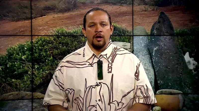 Hawaiian Word of the Day: Pōhaku