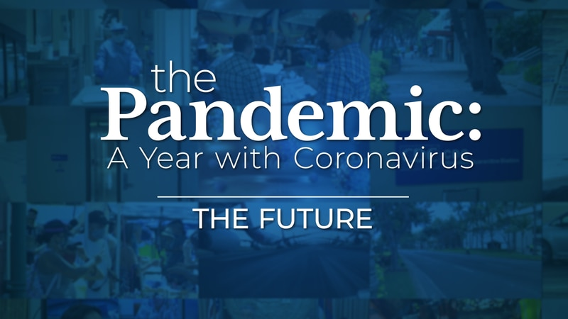 The Future - The Pandemic: A Year With Coronavirus