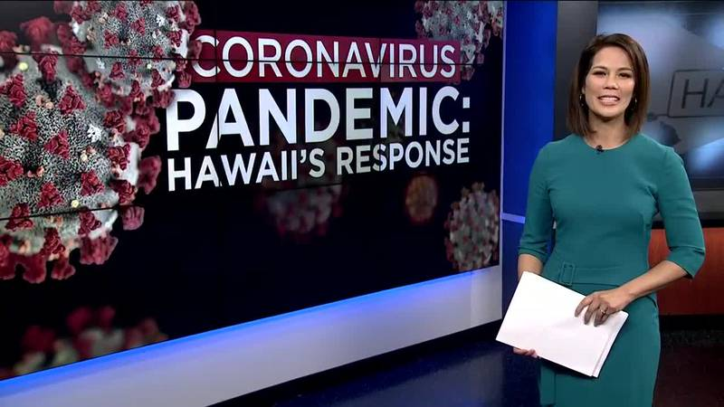 Hawaii's Response: Are hospitals prepared for a surge in cases?