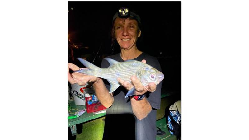 Police are searching for 56-year-old Joddielynn Taylor of Koloa.