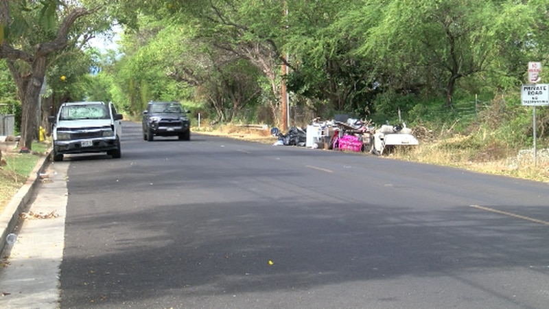 Because North Road in Ewa Beach is owned by three different entities, cleaning it up has been a...