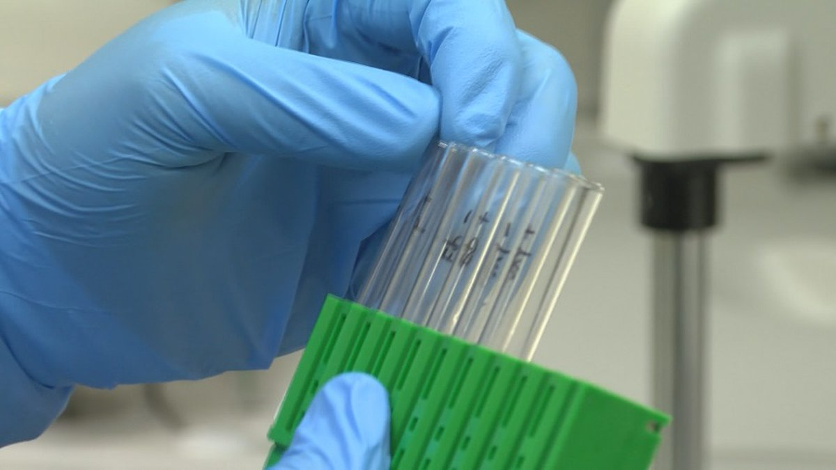 File photo of COVID-19 testing