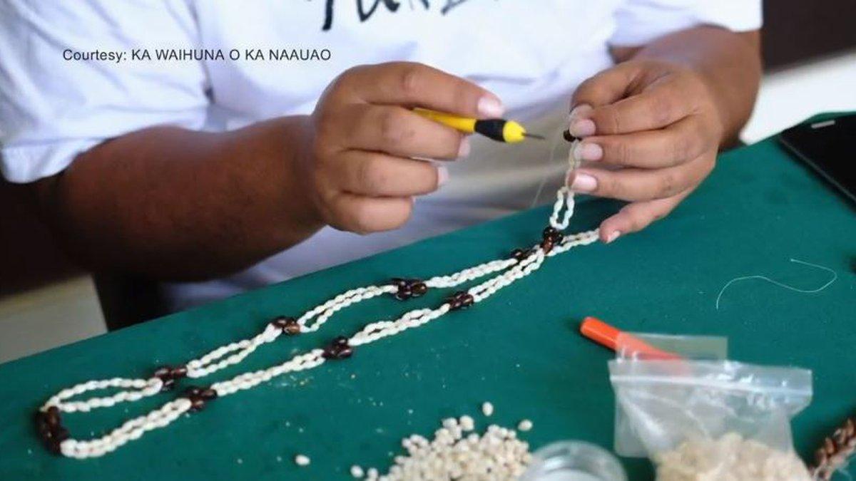 (Image: Ka Waihuna o Ka Naauao)