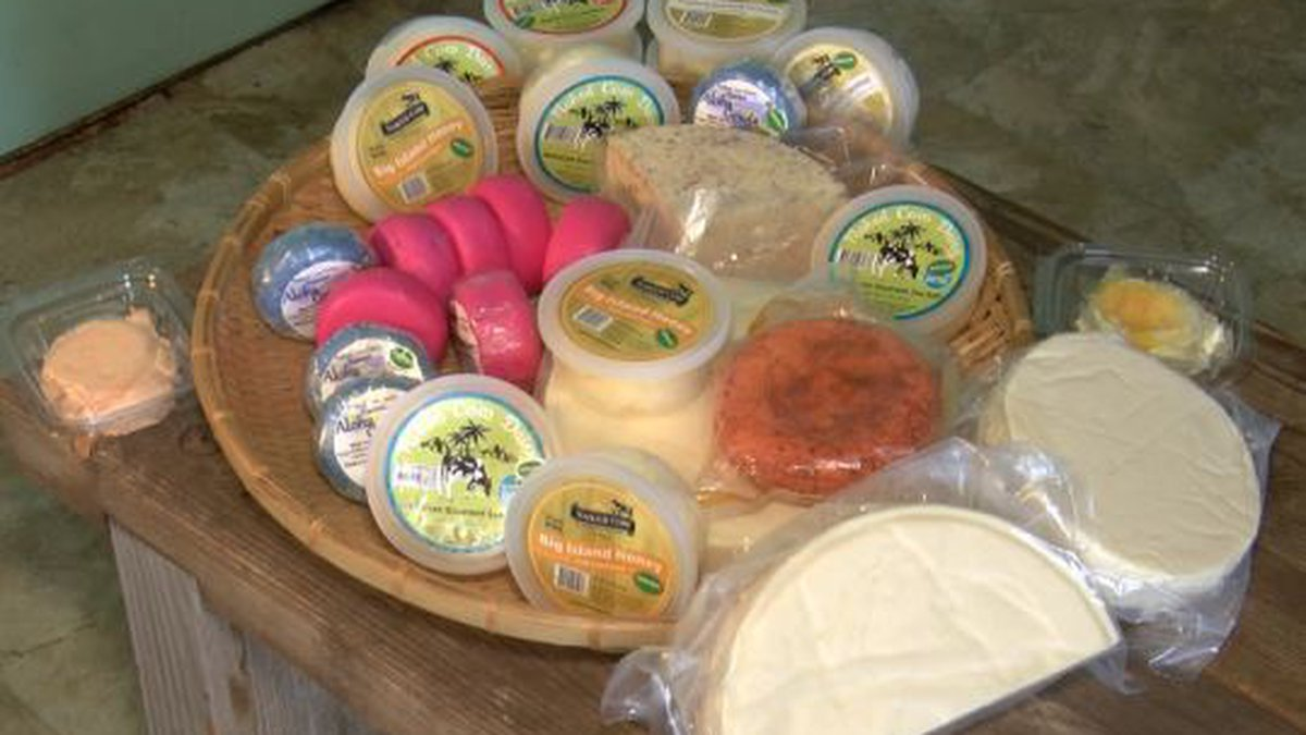Naked Cow Dairy hopes to buy about 50 cows from Big Island Dairy to continue making cheese and...
