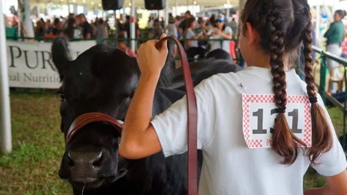 Hawaii State Farm Fair draws thousands over its two-day span.