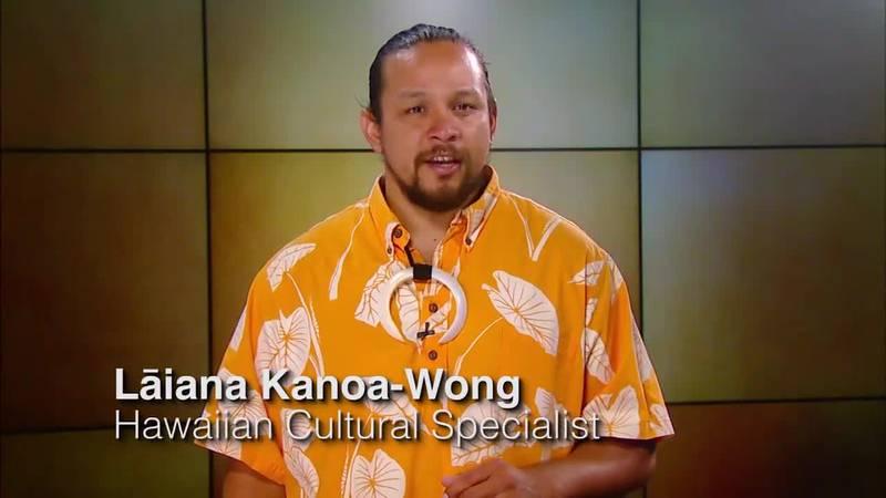 Hawaiian Word of the day: 'Onipa'a