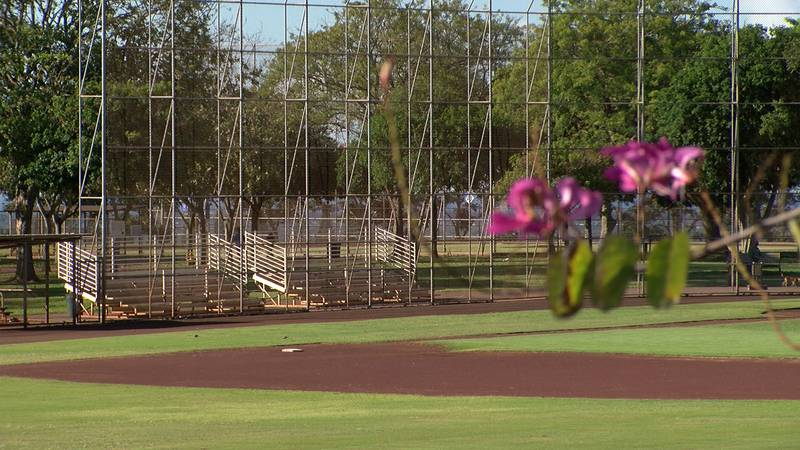 As outdoor youth sports leagues on Oahu resume operations this week,  the Cal Ripken/Babe Ruth...
