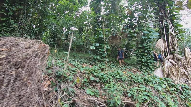 The Maunawili Falls hiking trail is closing for two years for a repair project.