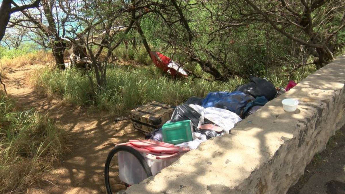 Illegal campsites were cleared from Diamond Head slopes this week.