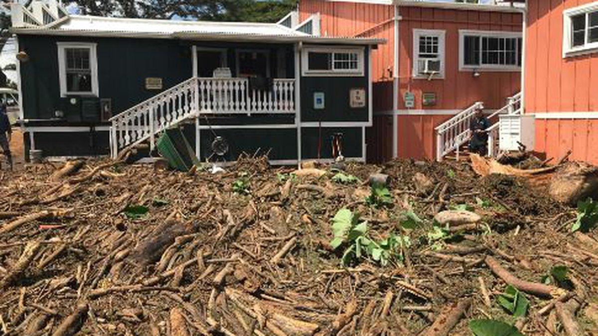 Clean-up efforts began in Haleiwa, which sustained major flooding on Tuesday.