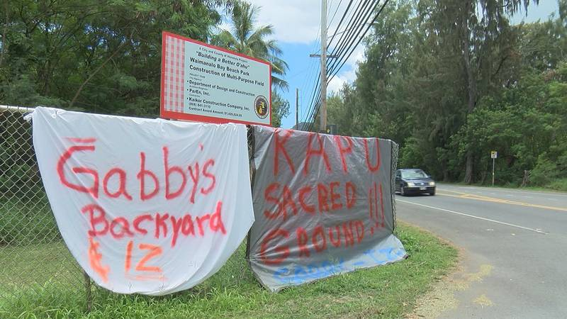 Opponents of a controversial park redevelopment project have been protesting and sign-waving at...