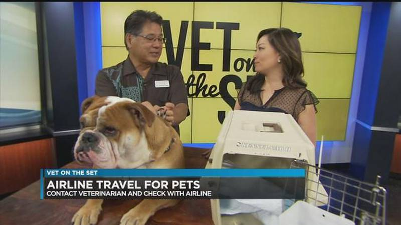 Dr. Richard Fujie encourages pet owners to look into the different airlines for options....