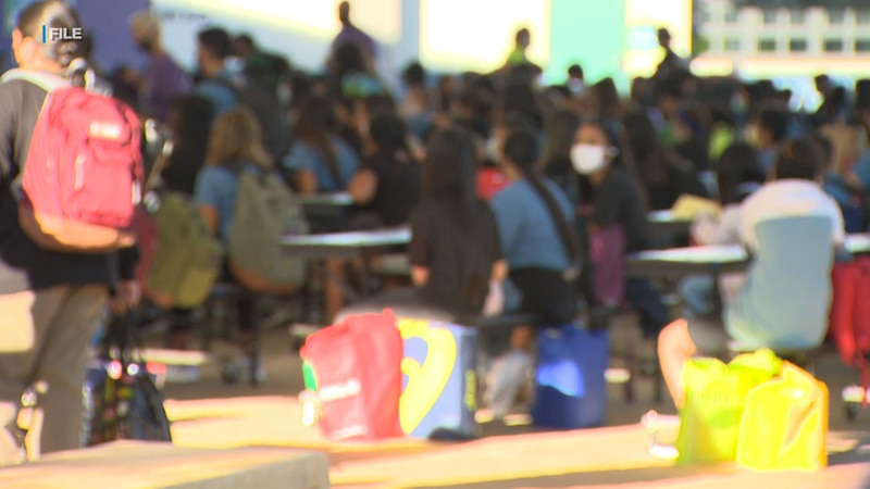 Governor David Ige stands behind the Department of Education's plan.