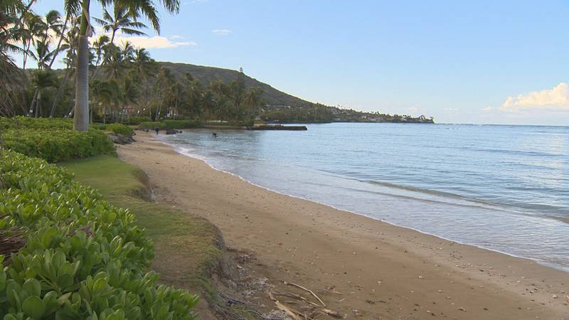 Some residents in Portlock are being asked to cut back their vegetation to allow for public...