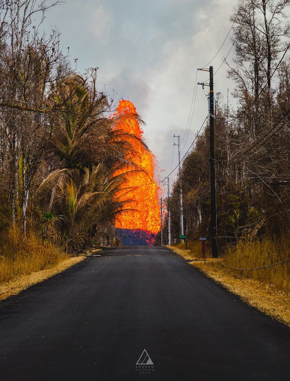 A fountain of lava looms over a roadway in Leilani Estates. (Image: Andrew Hara)