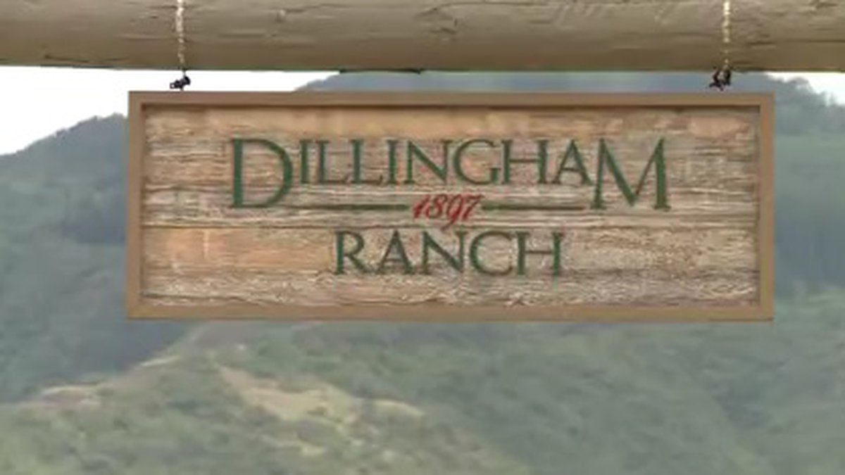 A developer's plan to split up Dillingham Ranch and sell pricey lots to buyers who could build...
