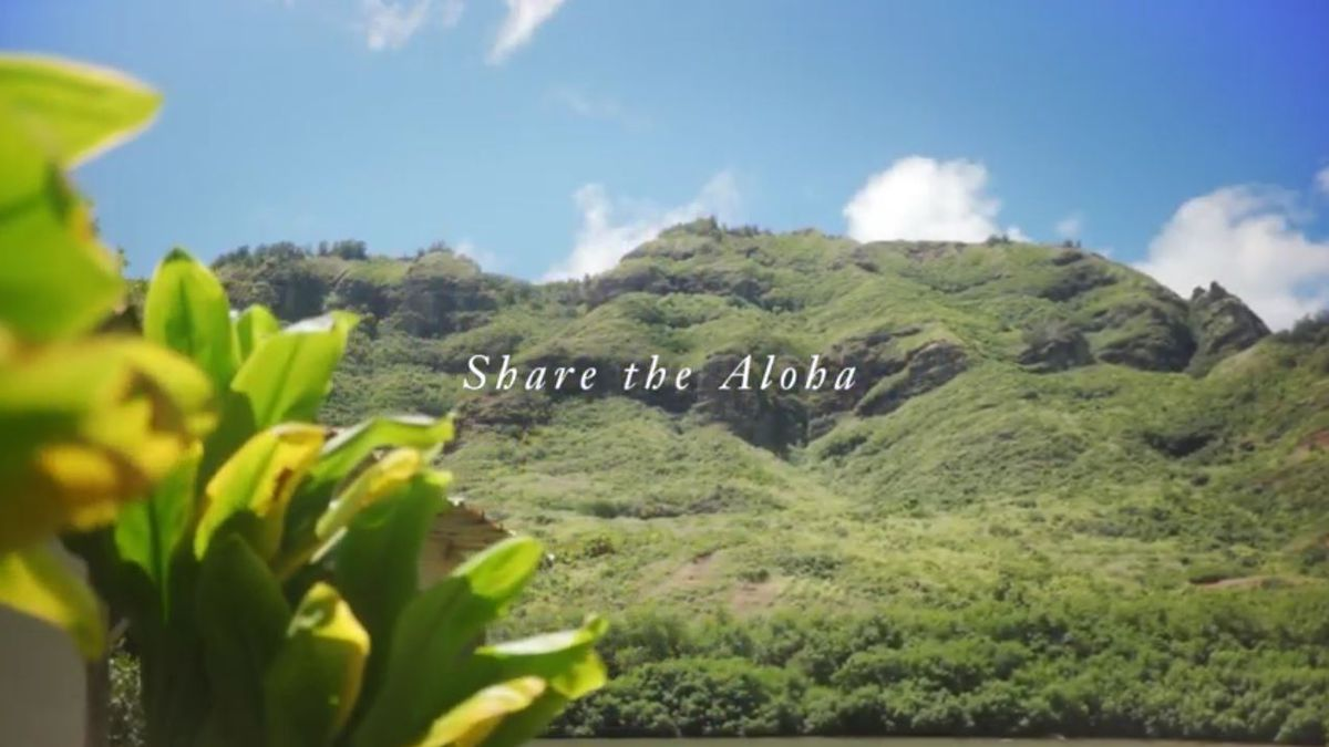 The videos encourage visitors to 'share the aloha.'