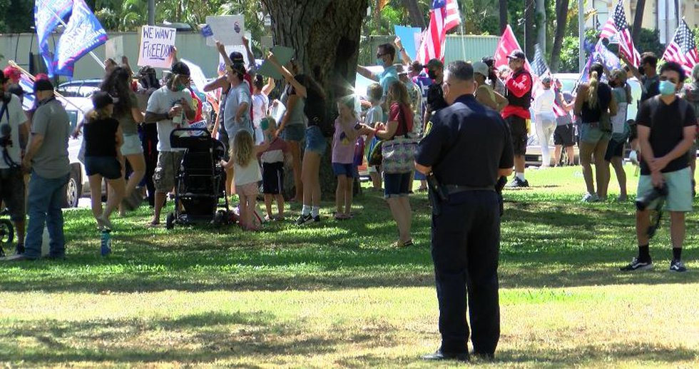 Dozens of protesters gathered near Honolulu Hale Saturday to make their voices heard.