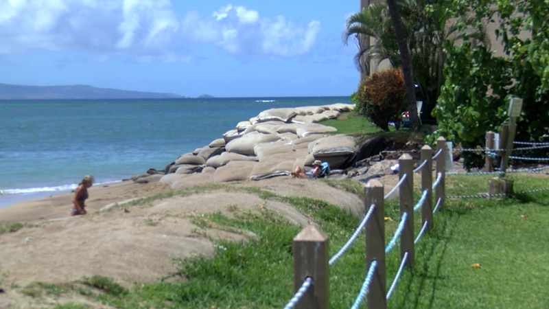 Layers of sand bags are now helping to stabilize several structures along the coastline in...