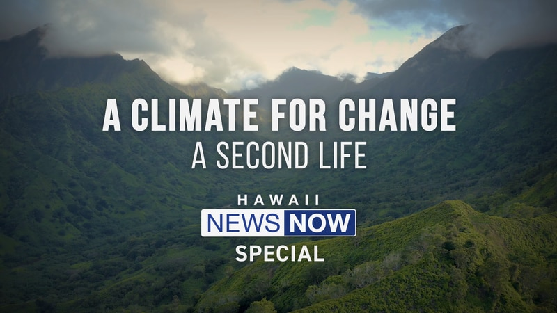 A Climate For Change: A Second Life