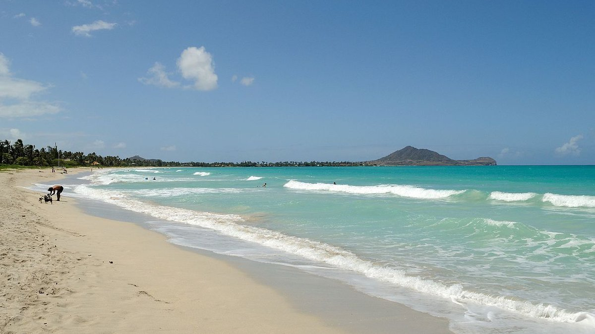 Kailua Beach (Image: Wikimedia Commons/file)