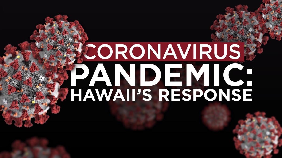 WATCH 'Coronavirus Pandemic Hawaii's Response,' our town hall on ...