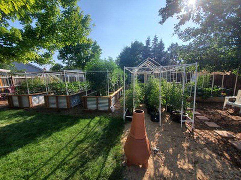 The Dooley Backyard Garden