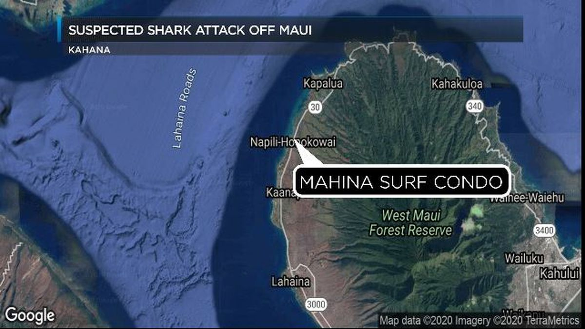 A woman was hospitalized with severe injuries after a suspected shark attack off Maui.
