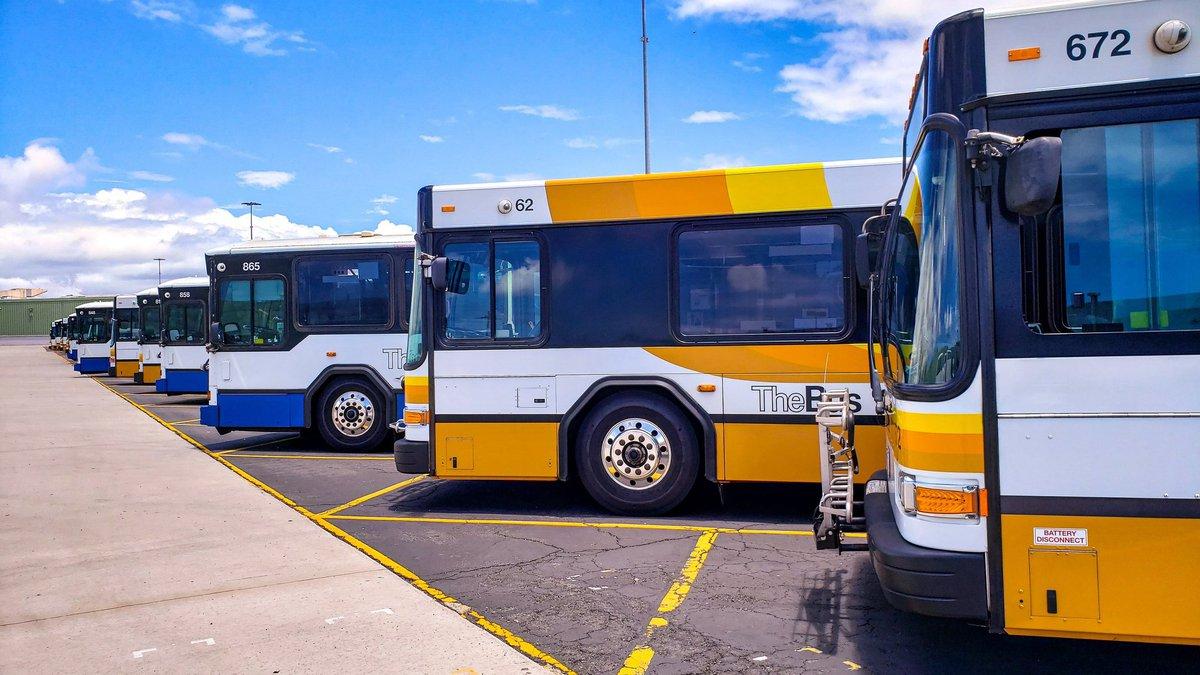 Honolulu city buses