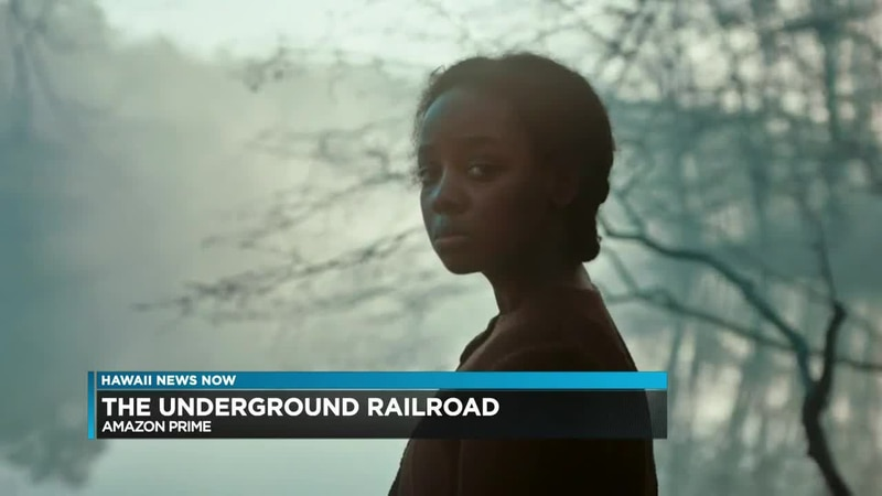 Terry Hunter reviews THE UNDERGROUND RAILROAD