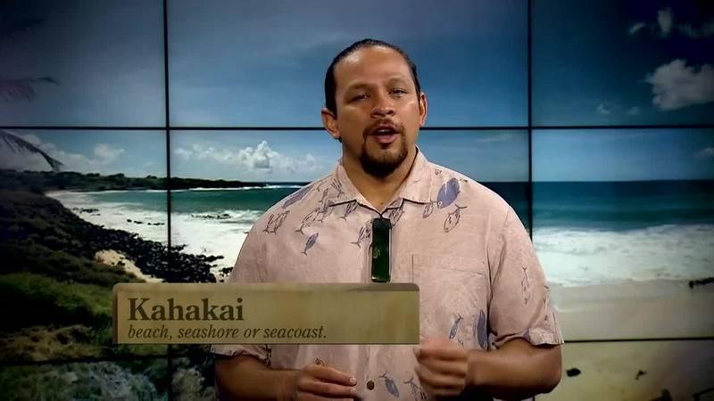 Hawaiian Word of the Day: Kahakai