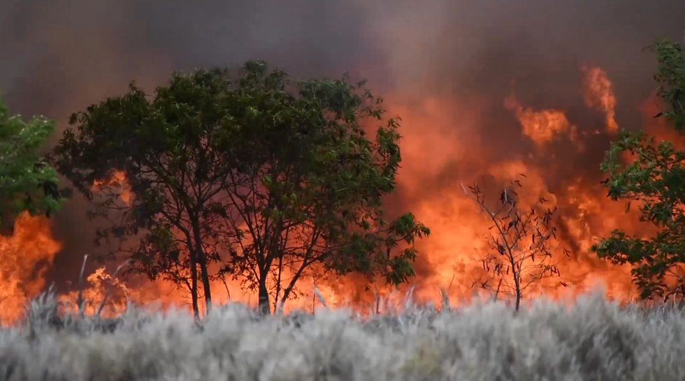 Flames raged in the dry brush in Kahului Sunday.