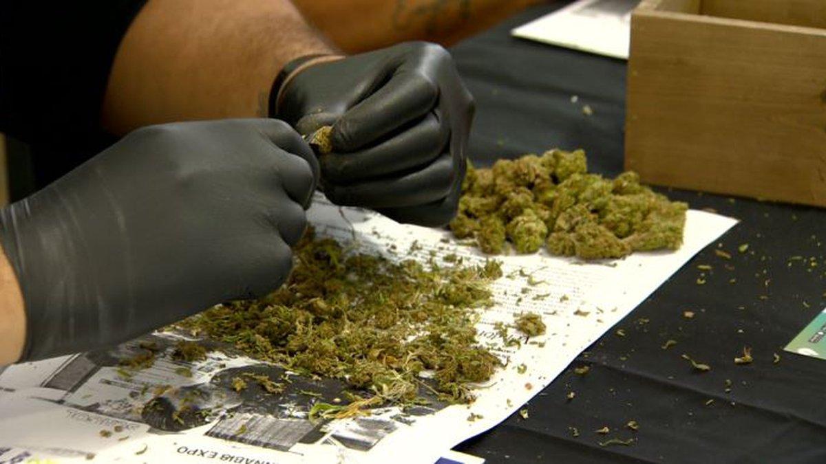 Medical Marijuana (file image)